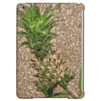Dearly departed iPad air cover