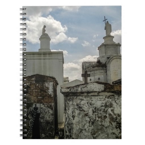 Death and Beauty, from St. Louis No. 1 Cemetery Spiral Note Books