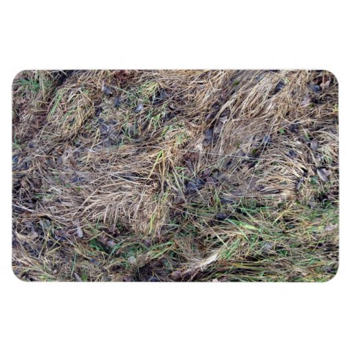 Death long grass with brown leaves rectangular magnet