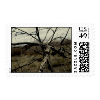 Death of Pain Awakened (stamp) Postage