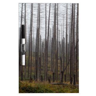 Death spruce trees Dry-Erase board