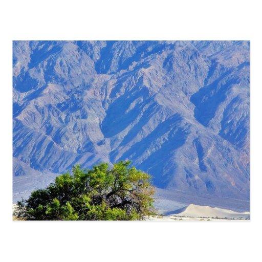 Death Valley abandona las montañas Tarjetas Postales