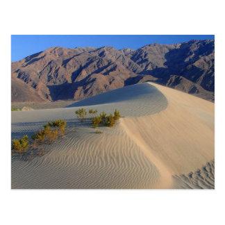 Death Valley California Tarjetas Postales