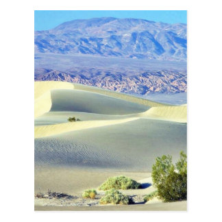 Death Valley Deserts Sand Dunes Postcard