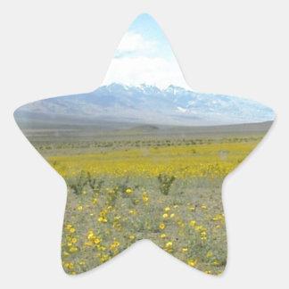 Death Valley en la floración Etiquetas