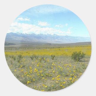 Death Valley en la floración Etiqueta