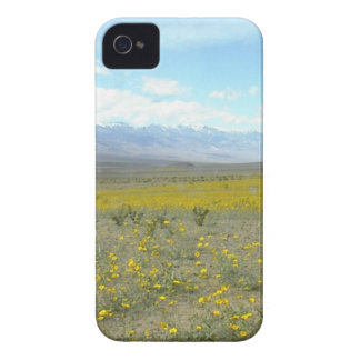 Death Valley in Bloom iPhone 4 Case