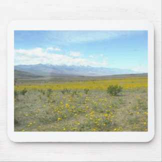 Death Valley in Bloom Mousepad