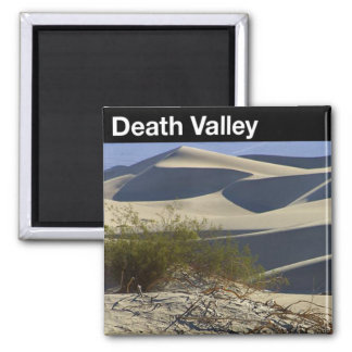 Death Valley National Park 2 Inch Square Magnet