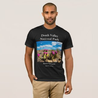 Death Valley National Park Men's T-Shirt