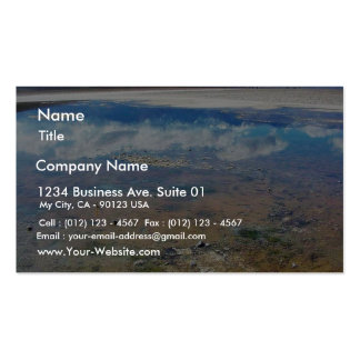 Death Valley Salt Double-Sided Standard Business Cards (Pack Of 100)