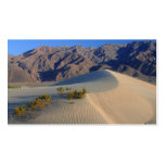 DEATH VALLEY SAND DUNES PHOTOGRAPHY NATURE BEAUTY Double-Sided STANDARD BUSINESS CARDS (Pack OF 100)
