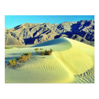 Death Valley Sand Dunes Post Card