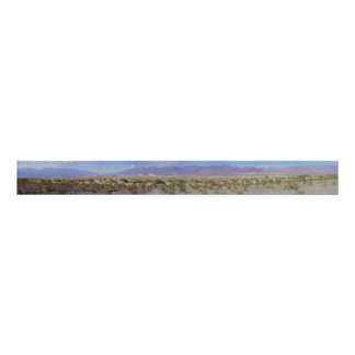 Death Valley Sand Dunes Poster