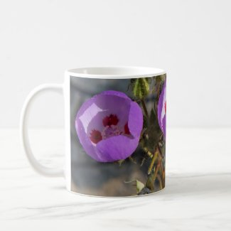 Death Valley Wildflowers Mug - Desert 5-Spot
