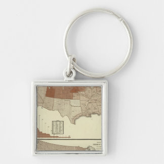 Deaths, diphtheria, digestive system keychain