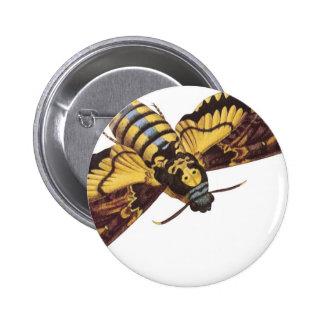 Death's Head Hawk Moth Button