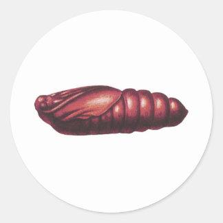 Death's Head Hawk Moth Classic Round Sticker