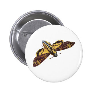 Death's Head Hawk Moth Pinback Button