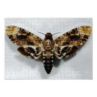 Death's Head Hawkmoth Acherontia Lachesis Personalized Invite