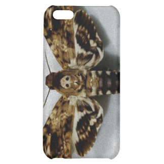 Death's Head Hawkmoth Acherontia Lachesis Cover For iPhone 5C