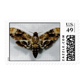 Death's Head Hawkmoth Acherontia Lachesis Postage Stamps