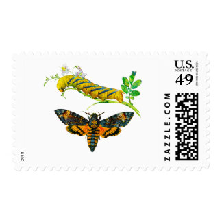 Death's-head Hawkmoth Postage