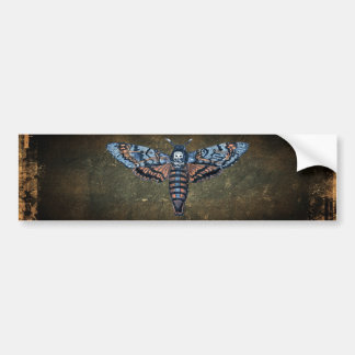 Death's Head Moth, aka Sphinx atropo moth Bumper Sticker