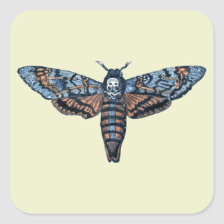 Death's Head Moth, aka Sphinx atropo moth Square Sticker