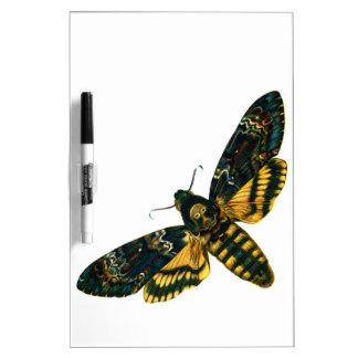 Death's Head Moth Dry Erase Board