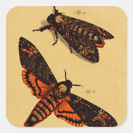 Death's Head Moth Square Sticker