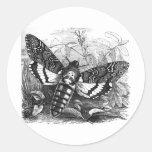 Deathshead Hawk Moth Classic Round Sticker