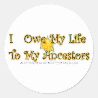Deba mi vida a los pegatinas de los antepasados pegatina redonda