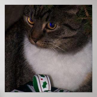 Debajo de la impresión del gato del árbol de navid póster