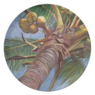Debajo de la placa del árbol de coco plato