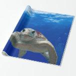 Debajo de la tortuga de mar