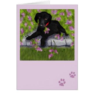 Debajo de las lilas tarjeta de felicitación