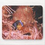 debajo del cojín de ratón de mar alfombrilla de ratón