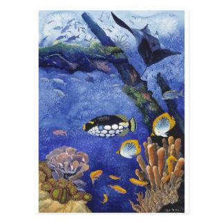 Debajo del mar I Tarjetas Postales