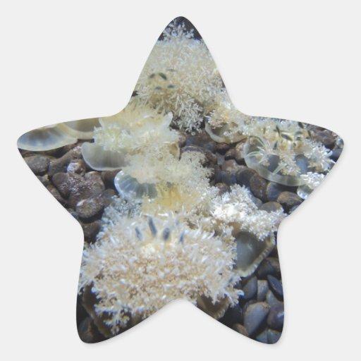 Debajo del mar pegatina en forma de estrella