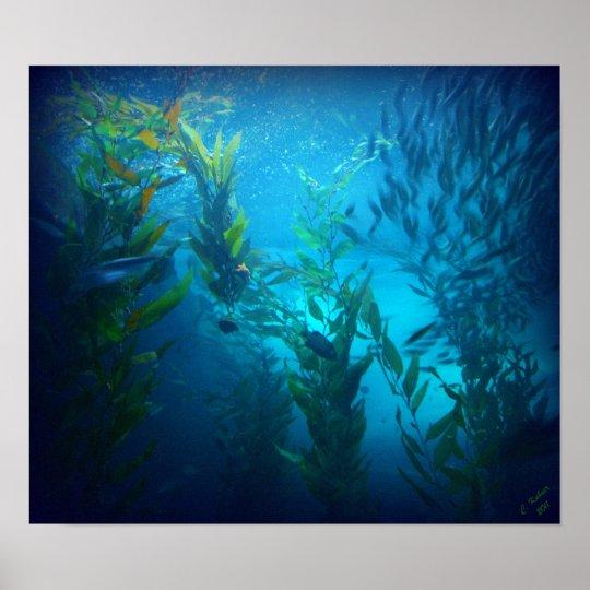 Debajo del mar póster