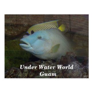 Debajo del mundo Guam del agua Tarjeta Postal