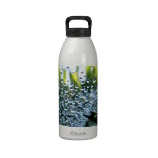 Debajo del Web Botella De Agua Reutilizable