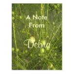 Debra Post Card