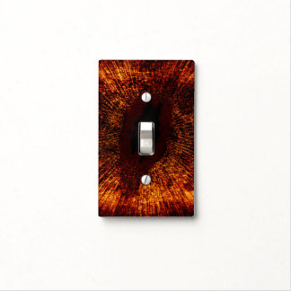 Debris Ring Around Star Fomalhaut (HD 216956) Switch Plate Covers