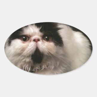 Debs pics 037.JPG Oval Sticker