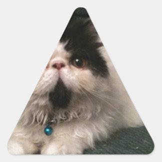 Debs pics 037.JPG Triangle Sticker