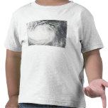 Decano 2 del huracán camisetas