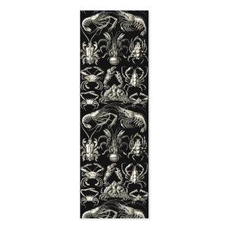 Decápodos de Ernst Haeckel Tarjetas De Visita Mini