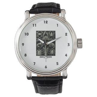 Decápodos Ernesto Haeckel Artforms de la Relojes De Pulsera